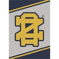 Milliken College Team Spirit (NCAA-SPT) Notre Dame 45881 Spirit Rectangle (4000054330) 3