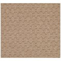 Capel Rugs Creative Concepts Grassy Mountain - Rectangle 3