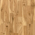 Quick-Step Eligna: Caramelized Maple 2-Strip 8mm Laminate U1907