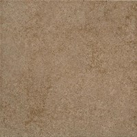 "Daltile Parkway: Brown 24"" x 24"" Glazed Ceramic Tile PK97-24241P3"