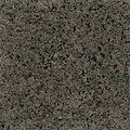 "Daltile Granite: Spring Green Polished 12"" x 12"" Natural Stone Tile G364-12121L"