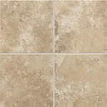 "Daltile Stratford Place: Willow Branch 18"" x 18"" Ceramic Tile SD9218181P2"