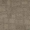 "Shaw Area: Open Plains 24"" x 24"" Carpet Tile 54436 00101"