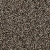 "Shaw Sound Advice Tile: Plan Ahead 24"" x 24"" Carpet Tile 54488 88703"